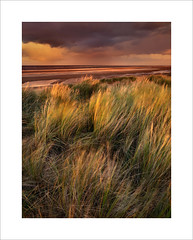 Untitled (Nigel Morton) Tags: holkham norfolk wellnextthesea landscape outdoors thegreatoutdoors beach dunes grass weather storm rain dramatic sunset goldenhour light landscapephotography