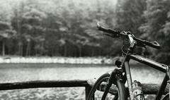 tour (shleebz) Tags: bike tour lake biking nature trekking wood bw analog film praktica
