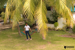 La Vida Orchard Samal Island  (18 of 28) (Rodel Flordeliz) Tags: samalisland davaocity samal gardencity lavidaorchard bnb airbnb bedandbreakfast gardenresort penaplata beach summerinsamal