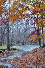 LEAVES 3 (KayLov) Tags: swannanoa scenery asheville grove park inn leaves foliage