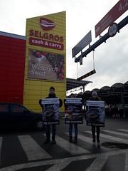 Selgros Lublin1.d (Otwarte Klatki) Tags: aktywizm karpie streetwork