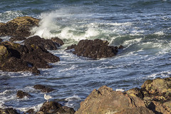 Waves Crashing against the Rocks (jacobbritten) Tags: ocean water tides waves