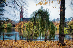 Baum & Kirche (floerioHH) Tags: 2018 autumn hamburg city uhlenhorst xh1 fujixseries fujifilm herbst autumncolors hdr