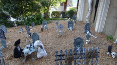 DSC01395 (shallowgrave@sbcglobal.net) Tags: halloween skeleton skull tombstone cemetery grave fence