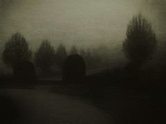 A Dark Tale of Winter (Bill Eiffert) Tags: dark winter trees emotion story impression pictorialism pictorialist park cold misty fog
