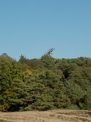 Hoge Veluwe - Stairway (ome.henk) Tags: amsterdamhenkwieland herfst hogeveluwe landal miggelenberg veluwe bomen bos landscape landschap 2018 kootwijk burgers natuur zand dieren