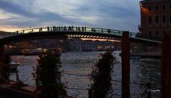 In principio era il Ponte Calatrava, poì divenne il Ponte della Costituzione, ma per i veneziani rimase il ponte della discordia... (hmeyvalian) Tags: venezia venise venice ponte pontecalatrava pontedellacostituzione piazzaleroma stazioneferroviaria veneziasantalucia santiagocalatrava architetto canalgrande italia italy italie