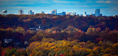Falls Colors towards Tyson's Corner skyline viewed from Observation Deck at CEB Tower Rosslyn VA (mbell1975) Tags: arlingtoncounty virginia unitedstates us falls colors towards tysons corner skyline viewed from observation deck ceb tower rosslyn va washingtondc washington dc usa america arlington aerial view fall autumn color colour colours tree trees leaves leafs