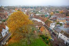 Sandwich, Kent (England) (Renate van den Boom) Tags: 11november 2018 boom europa grootbrittannië jaar kent landschap maand natuur renatevandenboom sandwich