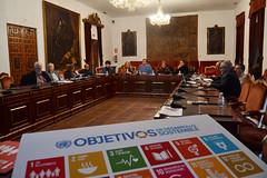 FOTO_Jornadas ODS_02 (Página oficial de la Diputación de Córdoba) Tags: diputación córdoba dipucordoba ods objetivos desarrollo sostenible agenda 2030 jornadas