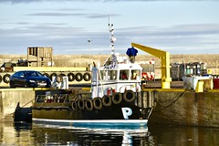 Pilot Boat - Fraserburgh Harbour - Aberdeenshire Scotland - 13/11/2018 (DanoAberdeen) Tags: danoaberdeen danophotography fraserburghscotland fraserburgh aberdeenscotland aberdeenshire trawlers trawlermen fishingtrawlers scottishtrawlers salmon haddock cod shellfish workboats tug northsea 2018 candid amateur autumn summer winter spring fraserburghharbour fish fishing fishingtown fishingport seafarers maritime whitefish whitefishport creels broch thebroch shipspotting shipspotters fishingboat northeast northeastscotland ship boat harbour lifeatsea shipbuilding marine northseafishing northseatrawlers pilotboat shellfishport pelagic burgh faithlie fishmarket
