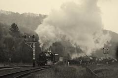 Levisham (feroequineologist) Tags: 5428 erictracey railway train steam levisham levishamstation black5 northyorkshiremoorsrailway nymr