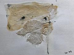 Portrait d'un félin domestique... (woltarise) Tags: création montreal papier sable tissu gesse liquide peinture calque 😻 femelle chat portrait collage