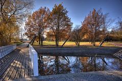49-Britzer Garten_181116_N- 21 (sigkan) Tags: deutschland berlin britzergarten hdr nikond700 nikon2485mmf284