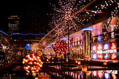 Fireworks on surface (gemapozo) Tags: kourakuen tokyodomecity pentax night rrs illumination tokyo k1mkii japan 東京都 日本 jp hdpentaxdfa50mmf14sdmaw イルミネーション 東京ドームシティ 夜景 大地の花池