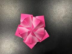2018.11 02 (Andrey Hechuev | Андрей Хечуев) Tags: kusudama кусудама sonobe сонобе origami papiroflexia dobradura оригами paperfolding papierfalten pliagedepapier origamimodular modularorigami papiroflexiamodular pink rosa rose розовый