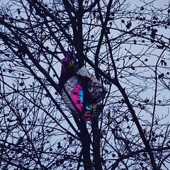 (ctjasa) Tags: nature forest trees baloon childlike wonder objects