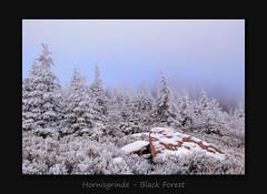 Hornisgrinde - Black Forest (MC--80) Tags: hornisgrinde black forest finally winter has arrived