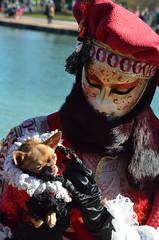 Déjà sur les planches ! (RarOiseau) Tags: hautesavoie annecy carnaval masque portrait animal chien fête événement