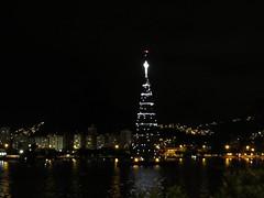 img_0681 (Ricardo Jurczyk Pinheiro) Tags: reflexo água iluminação árvoredenatal lagoarodrigodefreitas riodejaneiro