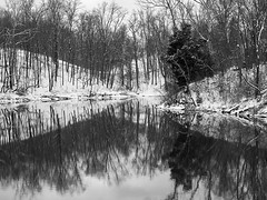 Prisoners Lake - M5149584 1 (John Kubler) Tags: c1 captureonepro olympusem5 olympus17mmf18 devoupark covington kentucky trees reflections snow