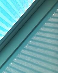 Week 4 Light Patterns (Carol Dunham) Tags: projectsunday