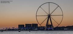 The Ain Dubai Ferris Wheel at sundown (Magic life gallery) Tags: the ain dubai ferris wheel sundown