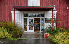 Greenbank Farm circa. 1904 (Barn B) Greenbank Store (SonjaPetersonPh♡tography) Tags: whidbeyisland washington washingtonstate stateofwashington barns redbarn nikon nikond5300 greenbankfarm circa1904 historicsite historic heritage heritagebuilding heritageregisteredproperty whidbeypiescafe grocerystore store barn greenbank shops fields forests wetlands winetastingshop restaurant greenbankcheese artworksgallery robschoutengallery
