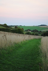 Track to the tent (dark_dave25) Tags: south downs uk england camping september 2018 hot
