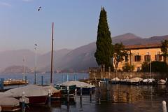 Lago d'Iseo, Italy, December 2018 056 (tango-) Tags: iseo lagoiseo iseolake lagodiseo lombardia italia italien italie italy
