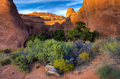 Arches National Park, Utah (klauslang99) Tags: klauslang nature naturalworld northamerica national arches park utah landscape