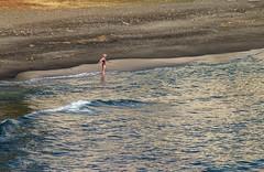 Un baño de Invierno (arapaci67) Tags: enero playa costatropical almuñécar granada andalucia spain canon28135 canonistas turismo