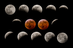 Lunar Eclipse 2019 Composite prnt 24 x 36 (1 of 1) (photoman_Tom) Tags: 2019 bloodmoon lunareclipse moon supermoon wolfmoon