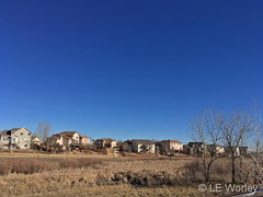 February 2, 2019 - A beautiful winter day in Thornton. (LE Worley)