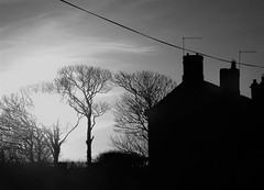 Cresswell Farm - B&W Sunset (Gilli8888) Tags: cresswell cresswellponds northumberland northeast countryside nikon p900 coolpix sunset farm silhouette silhouettephotography buildings sun wetlands lapwings dunlin waders waterbirds blackandwhite trees