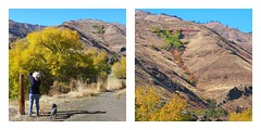 The Real Photographer (Eclectic Jack) Tags: eastern oregon trip october 2018 enterprise rural agriculture farm farming autumn fall mountains irrigation snake river canyon idaho border trees hells collage people woman dog mountain hill