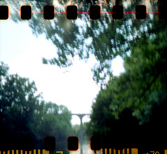 Bords de Vienne, Limoges, France. (matériel brouilleur) Tags: diana multi pinhole sténopé sprocket lomo lomography vienne hautevienne limoges arbre 35mm lensless pont bridge