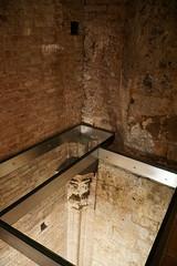 View down, Siena Cathedral Crypt (Tatiana12) Tags: italy siena sienacathedral crypt meetingrooms art architecture