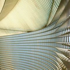 One fell swoop (Arni J.M.) Tags: architecture building onefellswoop santiagocalatrava calatrava curve squares lines form geometry abstract guillemins trainstation liege belgium