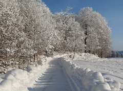 Winter path. (Bessula) Tags: bessula winter snow trees path white sky landscape country sweden hoarfrost frost light field scenery coth5