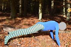Autumn - gymnastics in pantyhose and leotard (wetmuddy) Tags: outdoor fun forest autumn herbst wald leotard unitard pantyhose gymanstik gymnastikanzug lycra spandex medias strumpfhose tights legs leggings gimnasia gymnastics