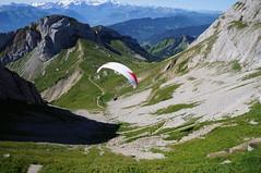 Pilatusbahn or Aerial Tram? Third Method. (Khao Soi Boy) Tags: mtpilatus pilatus paragliding alps mountains sonynex5n adventure luzern lucerne switzerland