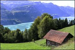 _SG_2018_09_9037_IMG_0605 (_SG_) Tags: schweiz suisse switzerland daytrip tour wandern hike hiking nature aussicht view trail mountain berge loop brienzer rothorn emmental alps summit lake brienz bahn steam train