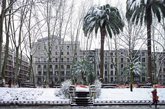 White Bilbao (Iker Merodio | Photography) Tags: bilbao white bizkaia biscay snow basque country euskadi albia garden lorategiak jardines de ricoh gr ii 2