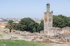 2018/07/05 16h08 Chellah (Rabat) (Valéry Hugotte) Tags: 24105 antiquité chella chellah maroc rabat canon canon5d canon5dmarkiv minaret ruines rabatsalékénitra ma