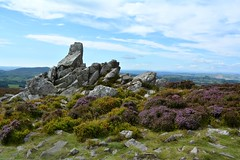 Stiperstones, Shropshire (Seventh Heaven Photography *) Tags: stiperstones shropshire nikon d3200 heather erica wid countryside nature landscape rocks rock hill sky blue