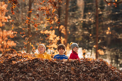 Leaf pile (Elizabeth Sallee Bauer) Tags: nature active autumn backyard beautyinnature boy child childhood fall fun girl happiness jumping kid leaf leafpile leaves november outdoors outside playing portrait raking trees youth