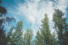 013-1 (Juanjo Uribe Durán) Tags: film santiagodechile santiago 35mm 35mmfilm filmnotdead canonprima kodak kodakultramax ultramax400 kodakultramax400 kodakfilm canon pointandshot nubes cielo sky cloud clouds pirque elcardo