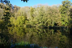 Waterloo Pond near Chilworth, Surrey 2 (Leimenide) Tags: chilworth surrey england north downs autumn trees pond lake water reflection landscape nature