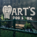 Hart's Dog Park Sign, San Jose, California thumbnail